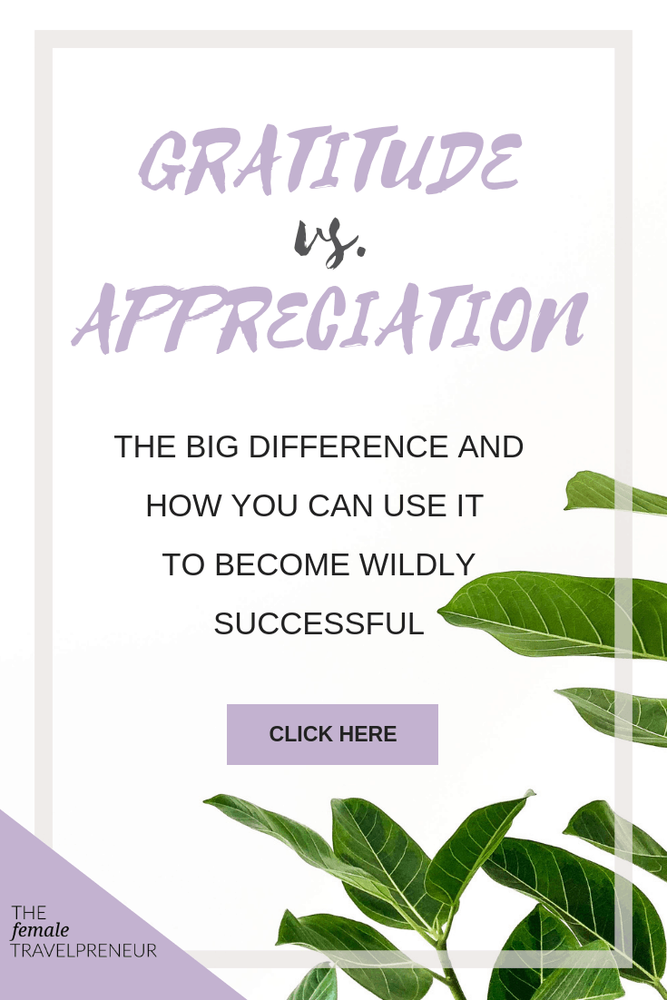 Appreciation vs. Gratitude: The Difference And How You Can Use it To Become Wildly Successful